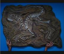 fossil_dino.jpg